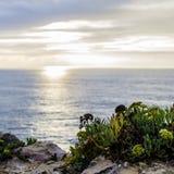 Ajuste de Sun no horizonte Imagem de Stock Royalty Free