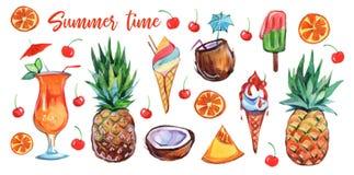 Ajuste do alimento exótico colorido do verão no fundo branco Projeto dos desenhos animados Fruto fresco Alimento exótico Fruto do ilustração royalty free