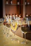 Ajuste do degustation do vinho, adega em Casablanca, o Chile Foto de Stock Royalty Free