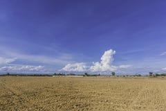 Ajuste do solo da área de terra e projeto da recuperação Imagens de Stock