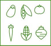 Ajuste dos ícones sobre alguns vegetais ilustração do vetor