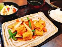 Ajuste dos legumes misturados fritados agita??o com tofu fritado imagens de stock