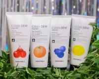 Ajuste dos limpadores faciais para normal, oleoso, a combina??o e a pele pigmentada pelo limpador de Tony Moly Clean Dew Foam foto de stock royalty free
