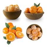 Ajuste dos mandarino frescos Tangerinas maduras e saborosos isoladas no fundo branco Tangerinas frescas com espaço da cópia para  foto de stock
