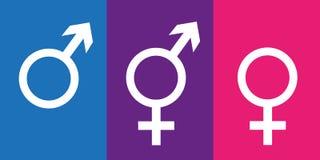 Ajuste dos símbolos do gênero que incluem o ícone neutro ilustração stock