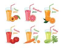Ajuste dos sucos de frutas e legumes diferentes nos vidros ilustração do vetor
