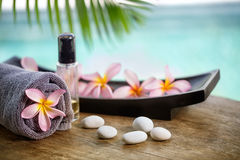 Ajuste dos termas do Balinese Fotos de Stock Royalty Free