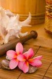 Ajuste dos termas do Balinese. A baixa iluminação, apropriada para termas relacionou Foto de Stock Royalty Free