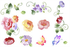 Ajuste elementos florais da aquarela - as folhas e as flores no vetor Mim ilustração royalty free