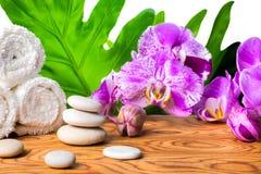 Ajuste hermoso del balneario de la orquídea floreciente de la lila, piedras blancas, a Foto de archivo