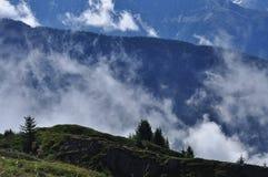 Ajuste místico de la montaña Nieblas de la mañana y bosque de pino Imágenes de archivo libres de regalías