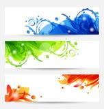 Ajuste moldes do folheto com frames da flor Foto de Stock Royalty Free