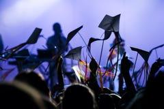 Ajuste a multidão em um festival de música com o papagaio Imagens de Stock Royalty Free