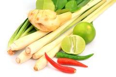 Ajuste o ingrediente vegetal para Tom yum fotografia de stock royalty free