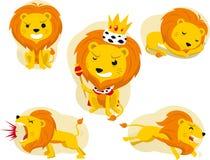 Ajuste o leão Imagens de Stock Royalty Free