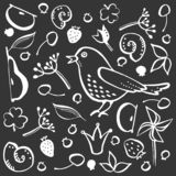 Ajuste o pássaro e a baga ilustração do vetor