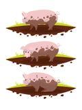 Ajuste o porco em uma poça da lama Ilustração do vetor Imagem de Stock