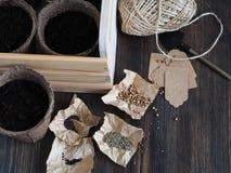 Ajuste plantando sementes Imagens de Stock Royalty Free
