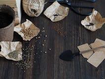 Ajuste plantando sementes Imagens de Stock