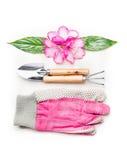 Ajuste que cultiva un huerto precioso con las herramientas y las flores rosadas en el fondo blanco Fotografía de archivo