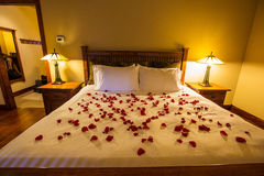 Ajuste romántico con los pétalos color de rosa en cama fotos de archivo