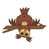Ajuste a suspensão curiosa isolada da coruja dos desenhos animados do caráter de Emoji de cabeça para baixo em um ramo Graphhics  Imagem de Stock Royalty Free
