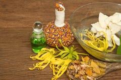 Ajuste tailandês da massagem dos termas com as bolas ervais tailandesas da compressa Foto de Stock