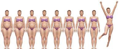 Ajustement de graisse avant après femme de réussite de poids de régime illustration libre de droits
