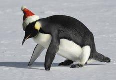 Ajustement pour Noël Photographie stock