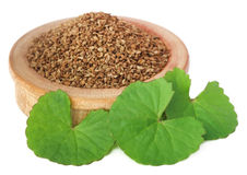 Ajwain seeds with thankuni leaves Stock Photo