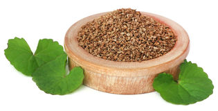 Ajwain seeds with thankuni leaves Royalty Free Stock Images