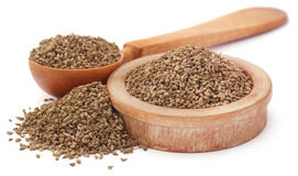Ajwain seeds in a wooden bowl. And spoon over white background royalty free stock photos