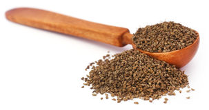 Ajwain seeds in a wooden spoon. Over white background stock photography