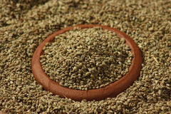 Ajwine or Carom Seeds is an uncommon spice used for flavouring. Ajwain or Ajowan Caraway (botanical name of Trachyspermum copticum) (also known as Ajowan caraway Royalty Free Stock Images