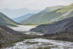 Ak-kem River Valley Montagna di Beluha Paesaggio di Altai La Russia Fotografia Stock