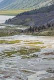Ak-kem River Valley Montagna di Beluha Paesaggio di Altai La Russia Fotografie Stock