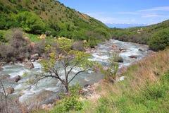 The Ak-Suu river near the Karakol city, Kyrgyzstan Stock Image