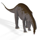 Aka Brontosaurus van Apatosaurus stock illustratie