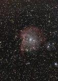 Aka nebulosa principal do macaco NGC2174 Foto de Stock Royalty Free