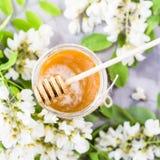 Akacia och honung - en läka produkt Royaltyfria Bilder