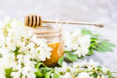 Akacia och honung - en läka produkt Arkivbilder
