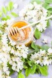 Akacia och honung - en läka produkt Royaltyfri Foto