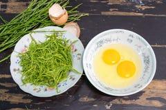 Akacia Pennata med ägget som gör omelett Fotografering för Bildbyråer