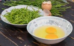 Akacia Pennata med ägget som gör omelett Royaltyfri Bild