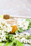 Akacja i miód - leczniczy produkt fotografia stock