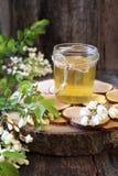 Akacjowy miód i kwiatonośna akacja zdjęcie royalty free