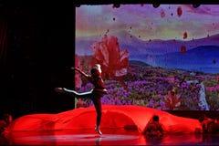 Akademin för dans för Peking för kår för barn` som s graderar för barn` s för prov den utstående utställningen Jiangxi för presta Royaltyfri Bild