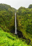 Akaka下跌夏威夷,大岛 库存照片