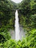 Akaka下跌瀑布大岛夏威夷 库存图片