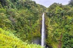 Akaka在夏威夷下跌瀑布 免版税库存图片